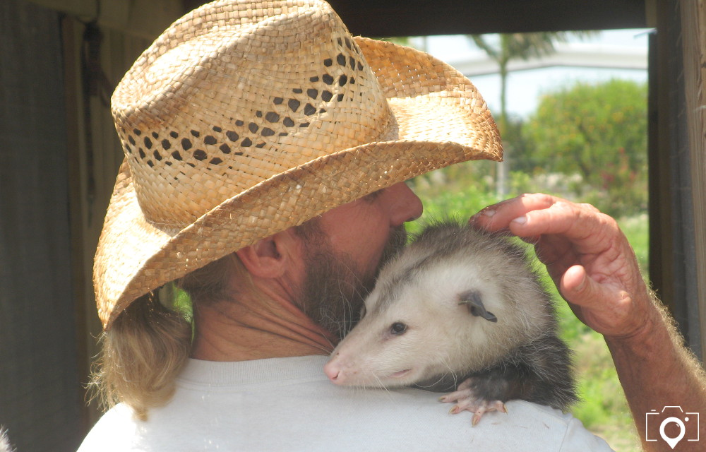 Amazing Animal Encounters