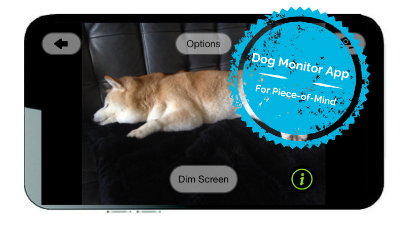 You Need This Dog Monitor App Before You Leave Your Home